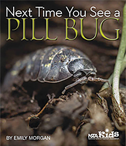[Next Time You See a Pill Bug]