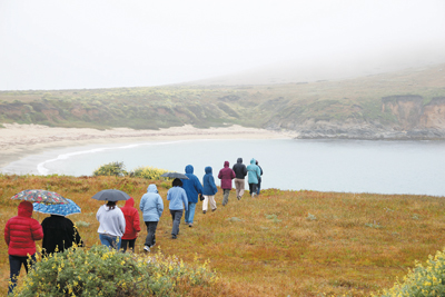 Teachers set out to explore habitats at the UC Bodega Marine Reserve.