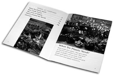 New Plants - Table of Contents