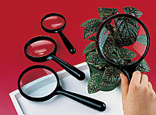 "2 1/2"" Magnifying Glass - Class Set of 10"
