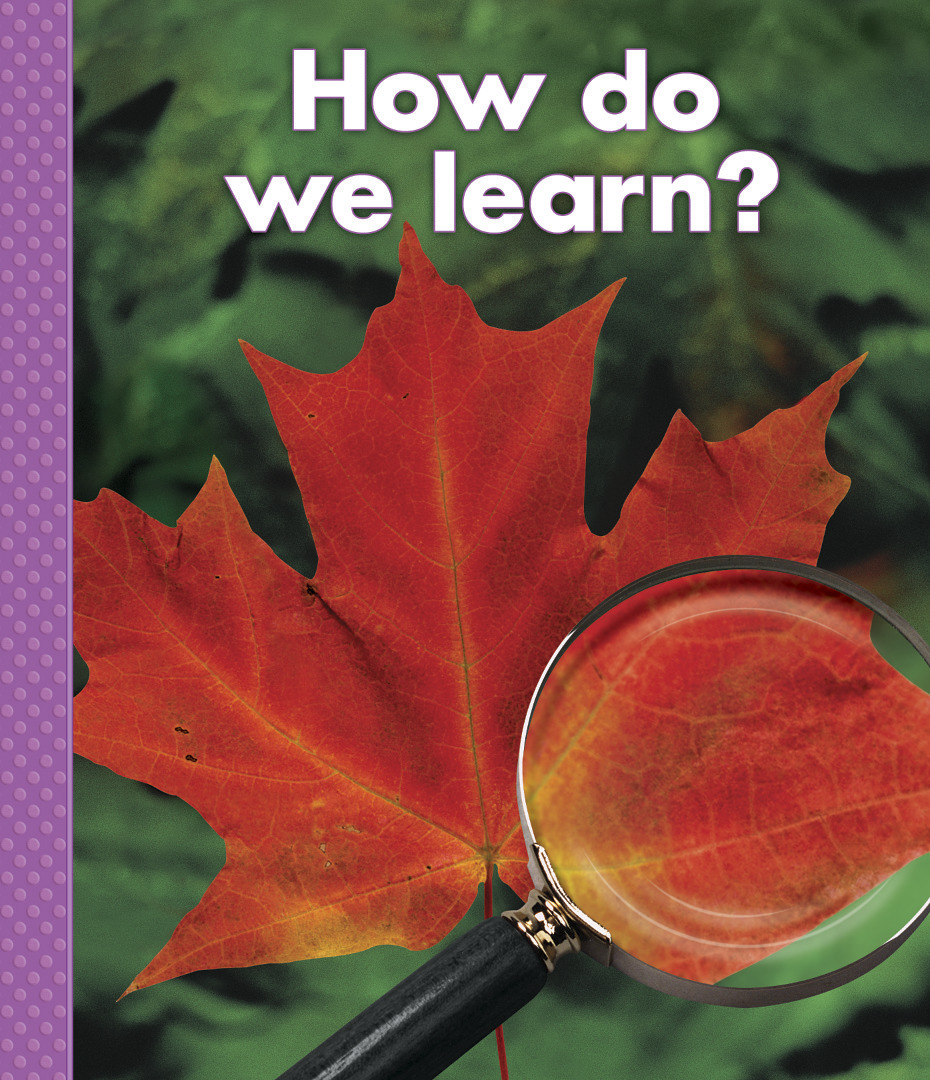 Big Book: How Do We Learn?