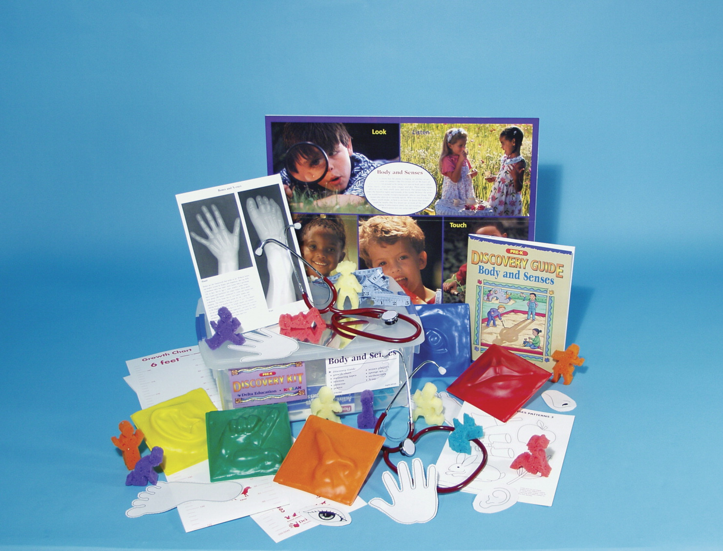 Body and Senses Discovery Kit