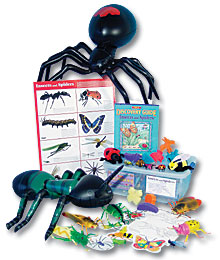 Insects and Spiders Discovery Kit