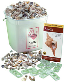 Hands-On Explorations Kit: Shells