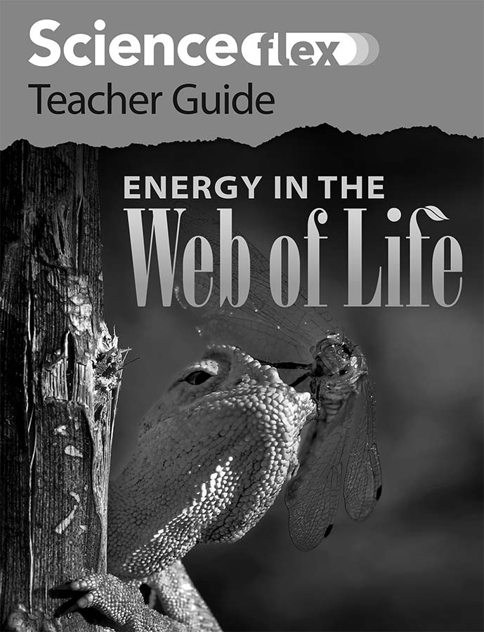Energy in the Web of Life Teacher Guide