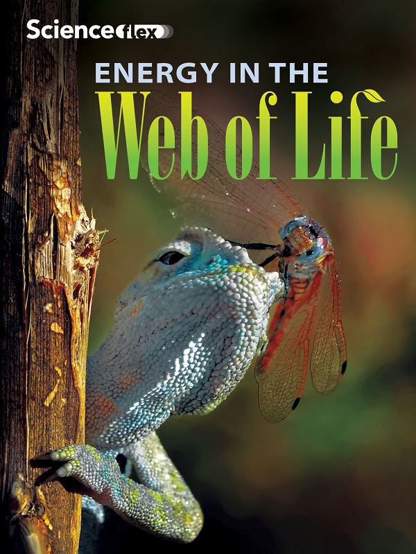 Energy in the Web of Life Red Reader, Pack of 4